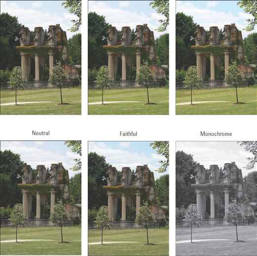 Canon 550d Picture Style Settings