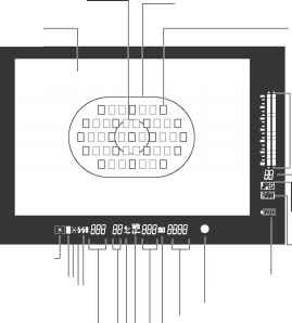 1ds Mark Iii Viewfinder Image